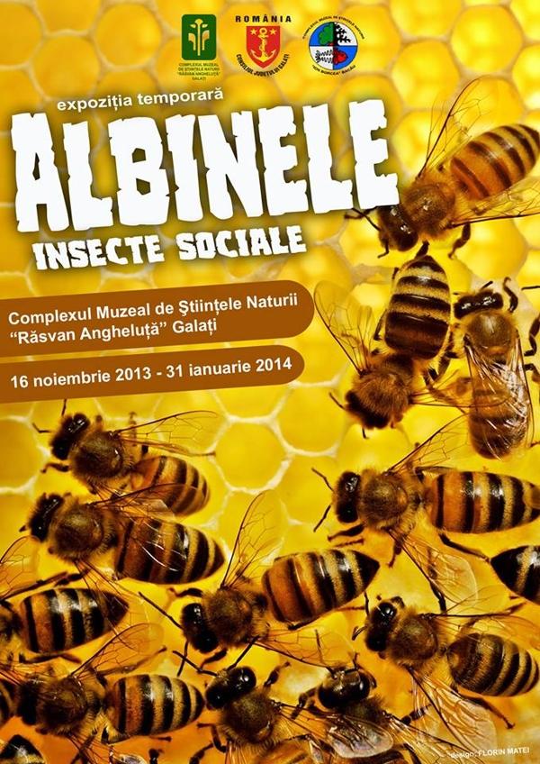 albine-complexul-muzeal