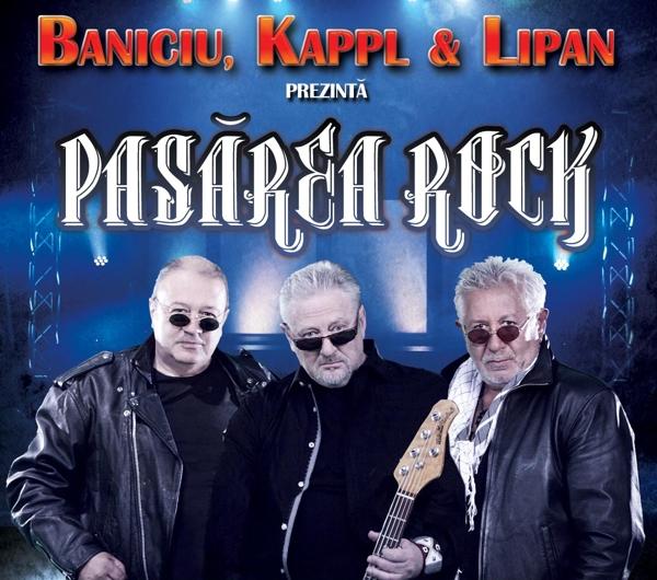 Pasarea-Rock-8aprilie