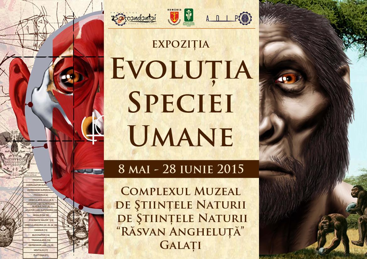 web expo evolutie